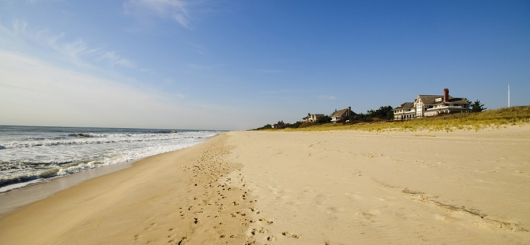 Hampton's Fever: Preparing Yourself for a Summer On the East End